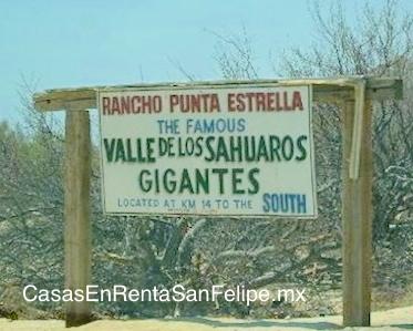A Brief History of El Cardón de San Felipe Baja Mexico