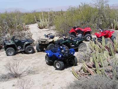 All Terrain Vehicles (ATVs) in San Felipe, Baja Image-2
