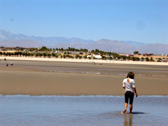 Clamming on the beach in San Felipe Baja Mexico Image-2