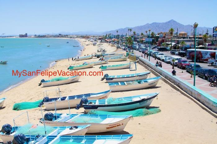 Fishing And Fishing Tips For San Felipe Baja Mexico
