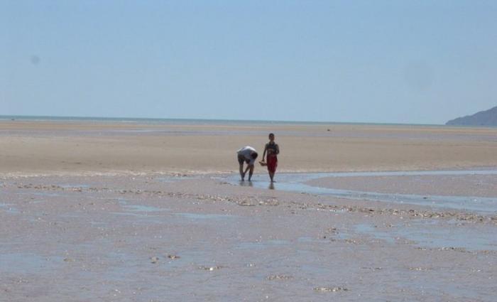 Clamming on the beach in San Felipe Baja Mexico Image-3