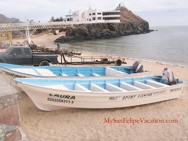 Sports Fishing in San Felipe, Baja, Mexico