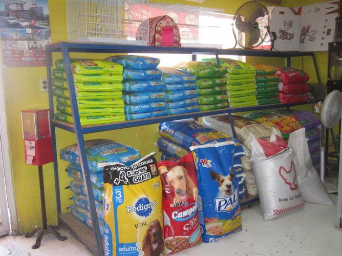 San Felipe Veterinarian & Pet Care Store Image-2