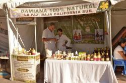 Damiana 100% Natural Liqueur stand at San Felipe Shrimp Festival