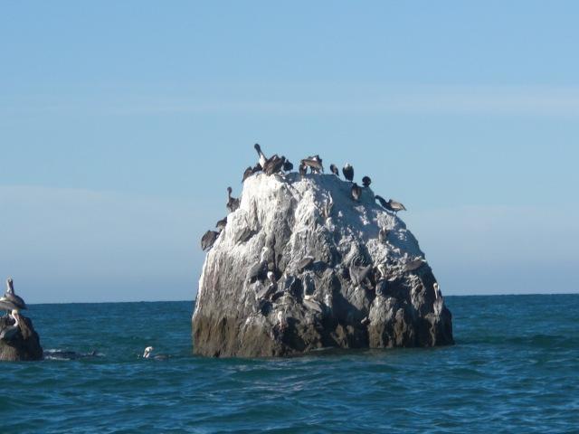 San Felipe Tourst Attraction - Konsag Island Image-3