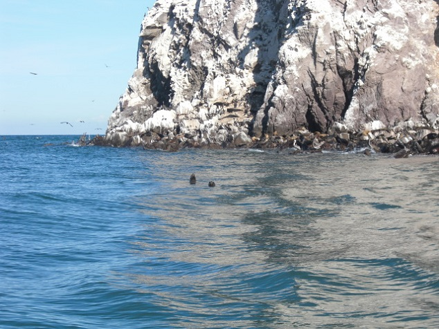 San Felipe Tourst Attraction - Konsag Island Image-2
