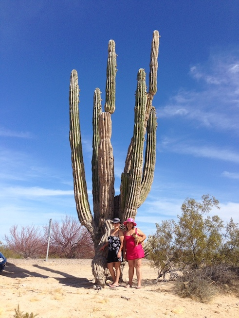 Guest review - Casa Sonora Rental home - April 2014